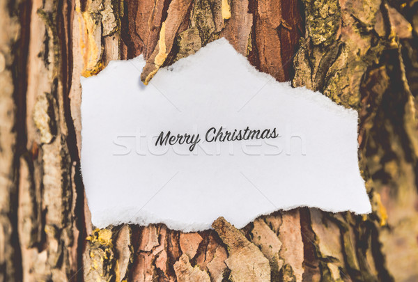 Vrolijk christmas tekst pijnboom vintage kleuren Stockfoto © gabor_galovtsik