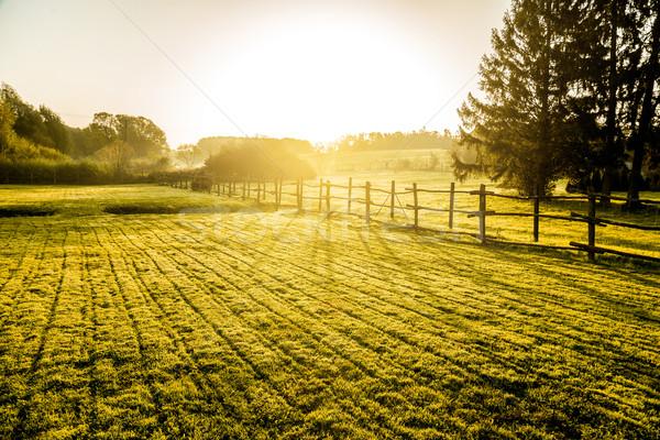 Sunrise misty bois clôture premier plan ciel Photo stock © gabor_galovtsik