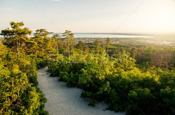 Beautiful autumn landscape. Stock photo © gabor_galovtsik