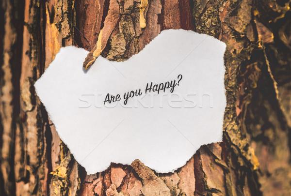 Are you happy? Stock photo © gabor_galovtsik