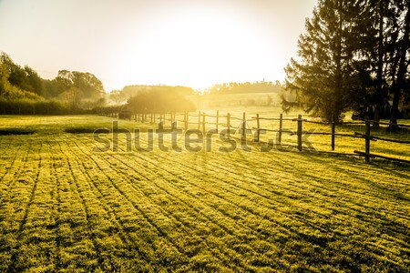 Sunrise over misty grassland with wooden fence in the foreground.  Stock photo © gabor_galovtsik