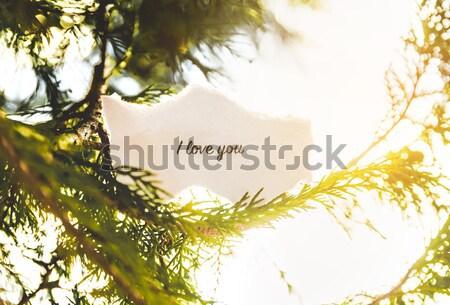Sourire texte arbre de pin vintage couleurs arbre Photo stock © gabor_galovtsik