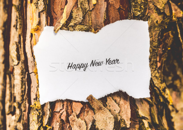 Happy New Year text Stock photo © gabor_galovtsik
