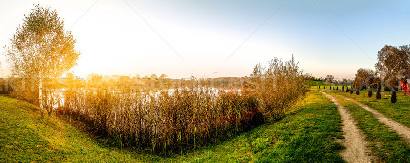 Belle coucher du soleil lac panoramique vue arbre Photo stock © gabor_galovtsik