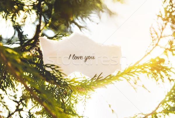 Amour texte arbre de pin vintage couleurs arbre Photo stock © gabor_galovtsik