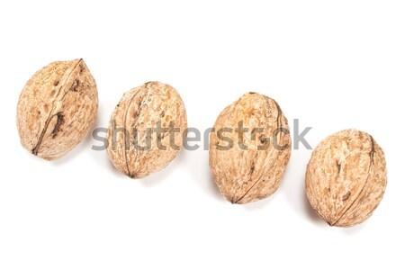 孤立した 白 食品 背景 グループ シェル ストックフォト © gavran333