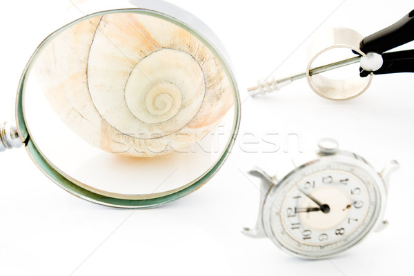 Clock with Magnifier and Compass or Time and Space Stock photo © gavran333