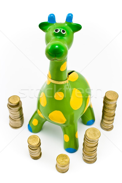 Giraffe Money-box Stock photo © gavran333