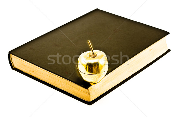 Goldan Book on Old Book Stock photo © gavran333