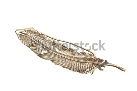 Old silver feather brooch Stock photo © gavran333