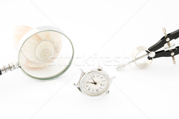 Clock with Magnifier and Compass  Stock photo © gavran333