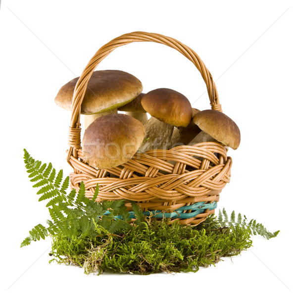 Boletus mushrooms in a basket Stock photo © Gbuglok