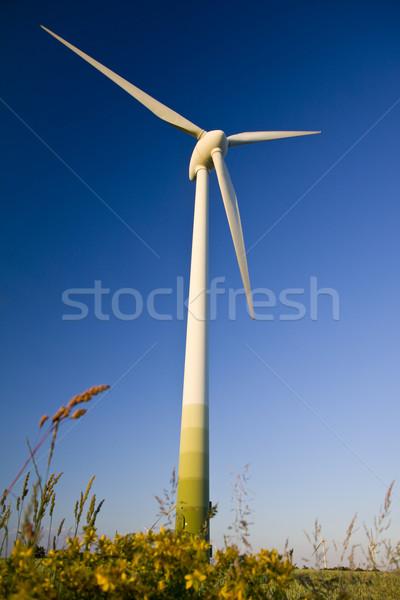 Windmill Stock photo © Gbuglok