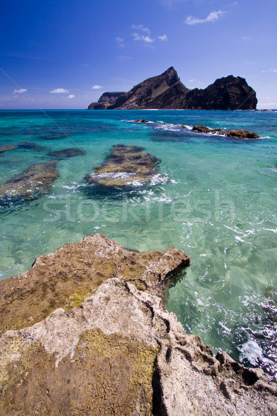 Ilheu de Baixo island, Madeira islands Stock photo © Gbuglok