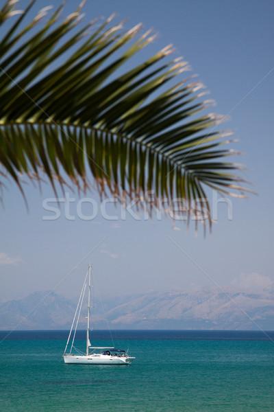 ボート 手のひら 白 海 葉 ストックフォト © Gbuglok