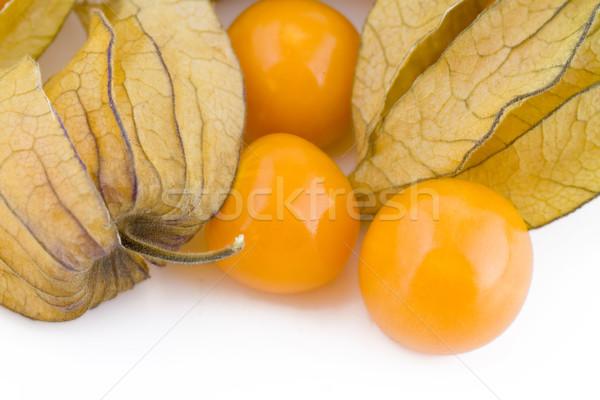 Physalis fruits Stock photo © Gbuglok