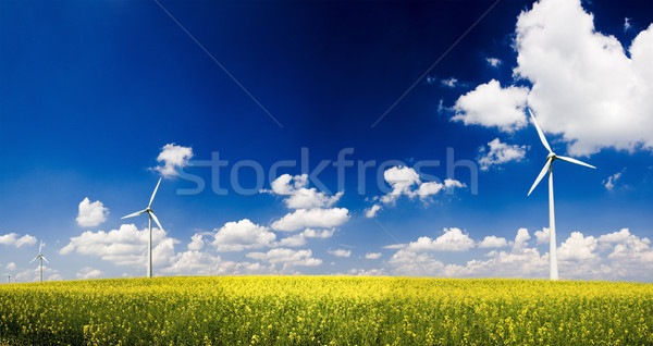 Panorama windmills Stock photo © Gbuglok
