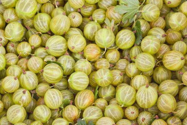 Green gooseberry background Stock photo © Gbuglok