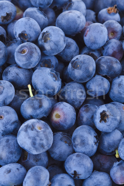 Blueberries background Stock photo © Gbuglok