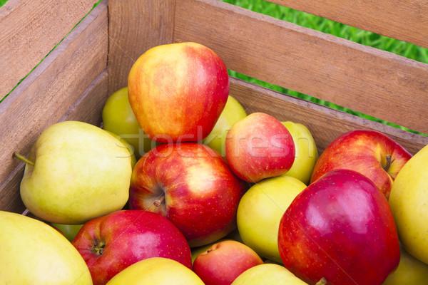 Fraîches pommes bois boîte vert rouge Photo stock © Gbuglok