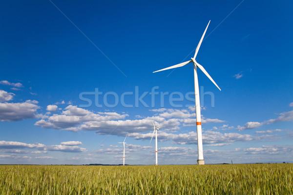 Windmills in a field Stock photo © Gbuglok
