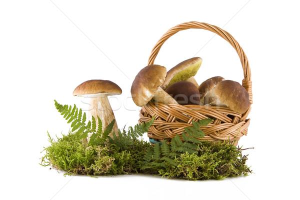 Boletus funghi fuori basket fresche verde Foto d'archivio © Gbuglok