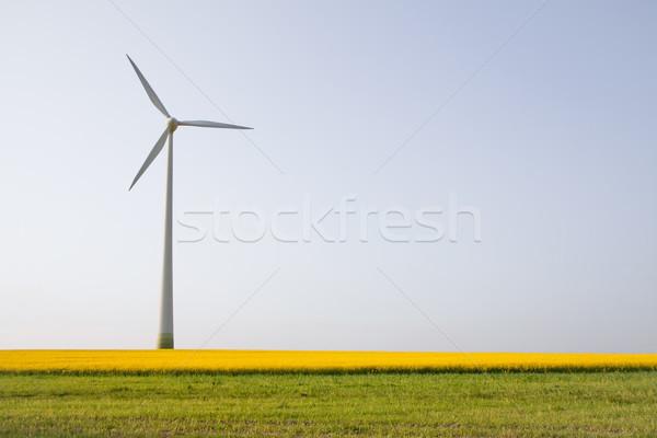 Windmill over horizon Stock photo © Gbuglok