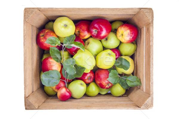 Rood groene appels houten vak vers Stockfoto © Gbuglok