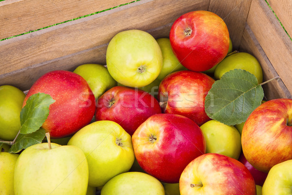 Fresh apples in wooden box Stock photo © Gbuglok