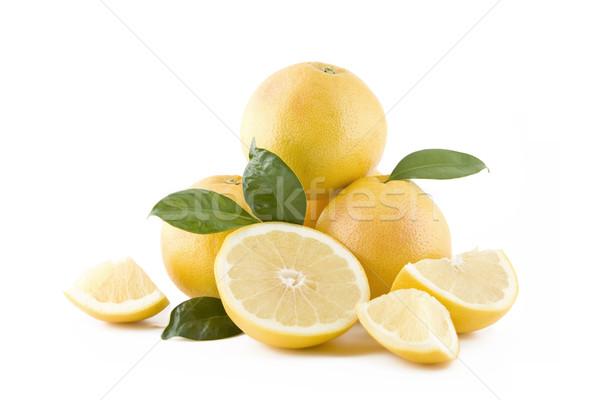 Juteuse blanche isolé nature fruits vert Photo stock © Gbuglok