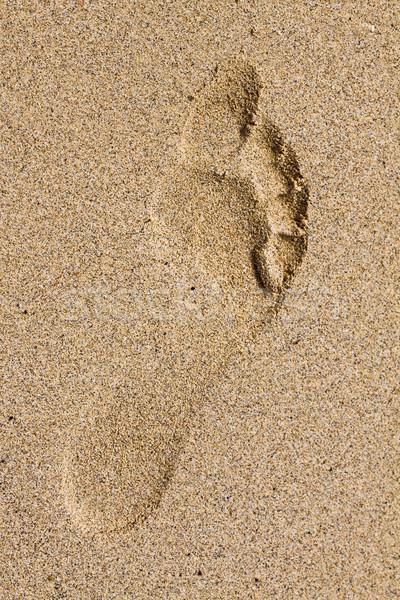 Lábnyom homok meztelen láb tengerpart nyár Stock fotó © Gbuglok