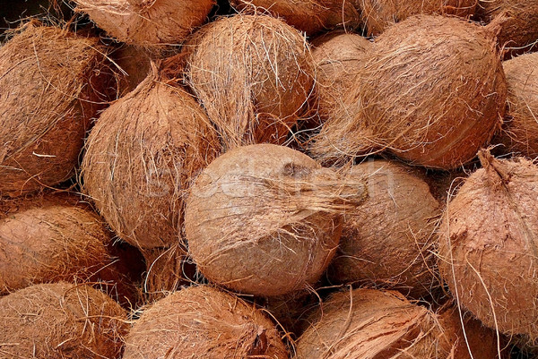 Noix de coco alimentaire nature Photo stock © Gbuglok