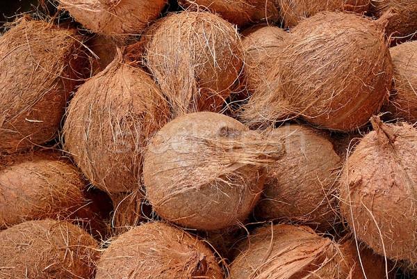 Kókuszdió kevés étel természet Stock fotó © Gbuglok