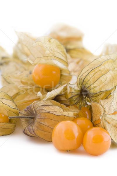 Physalis fruits on white Stock photo © Gbuglok
