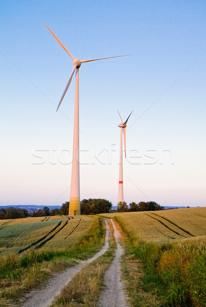 Trails to windmills Stock photo © Gbuglok