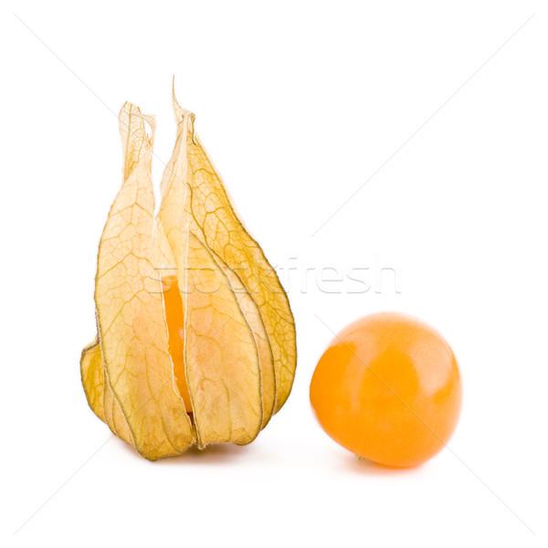 Two physalis fruits Stock photo © Gbuglok