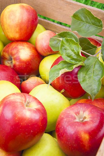 Stockfoto: Groene · Rood · appels · houten · vak · vers