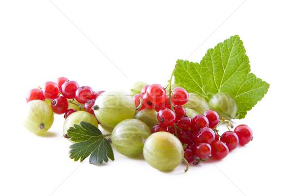 Currants and gooseberry Stock photo © Gbuglok