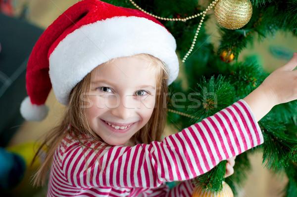 女の子 サンタクロース 帽子 肖像 かわいい 幸せ ストックフォト © GekaSkr