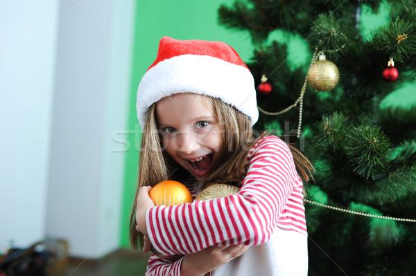 девочку Дед Мороз Hat улыбаясь Рождества Сток-фото © GekaSkr