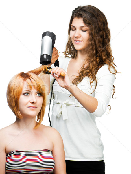 Fodrász hajszárító profi szalon női vásárló Stock fotó © GekaSkr