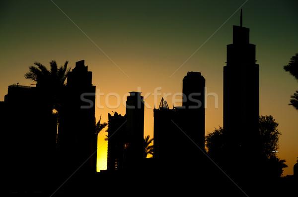 Dubai noc piękna widoku Night City budowy Zdjęcia stock © GekaSkr