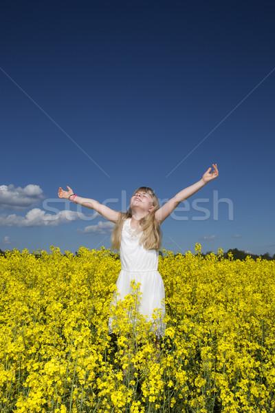 Girl on a Rape Field Stock photo © gemenacom