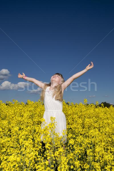 Lány nemi erőszak mező fiatal lány karok tavasz Stock fotó © gemenacom