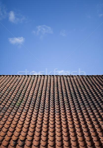 Azulejo techo casa rojo arquitectura Foto stock © gemenacom