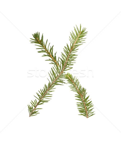 épinette lettre isolé blanche arbre hiver Photo stock © gemenacom