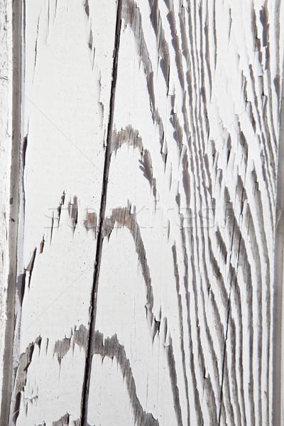 Elnyűtt zebra csíkos fal minta Stock fotó © gemenacom