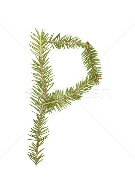 Enfeitar isolado branco árvore inverno Foto stock © gemenacom