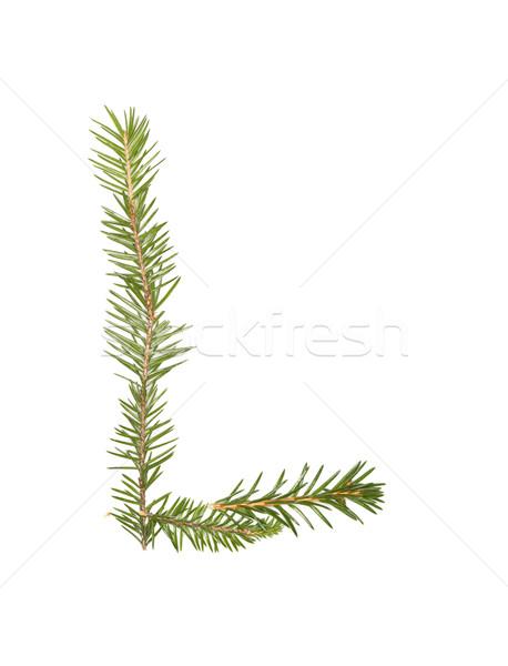 Sparren letter l geïsoleerd witte boom winter Stockfoto © gemenacom
