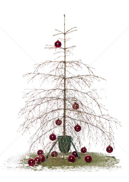 Christmas tree Stock photo © gemenacom